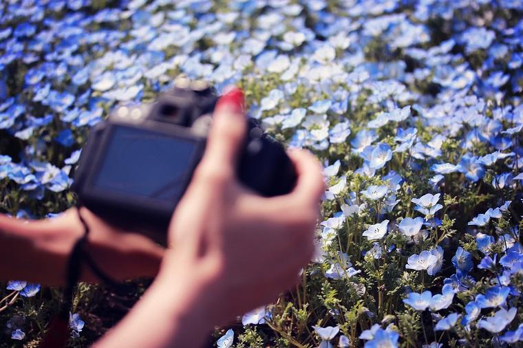 一眼レフで花の写真を撮影する女性