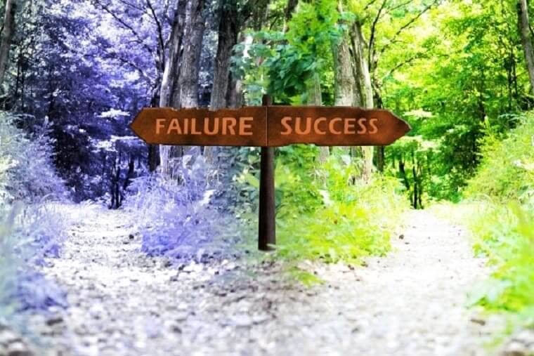 成功と失敗の分かれを指す森の砂利道